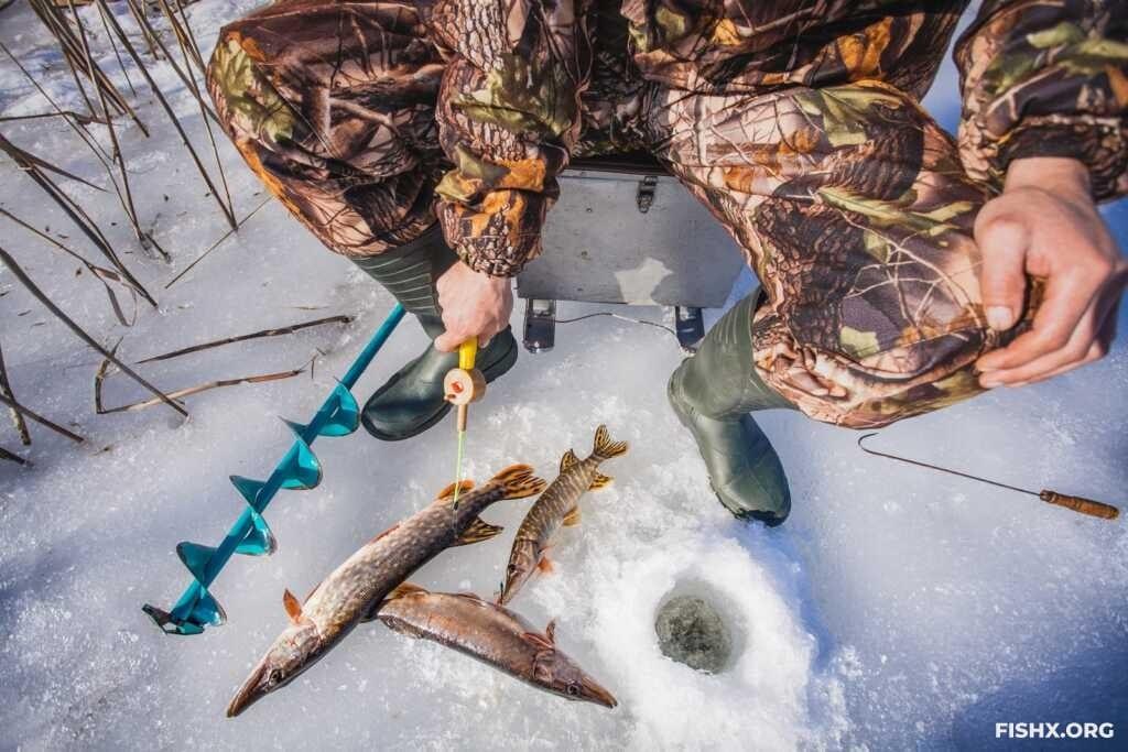 Балансиры - тонкости ловли на балансир зимой на озерах