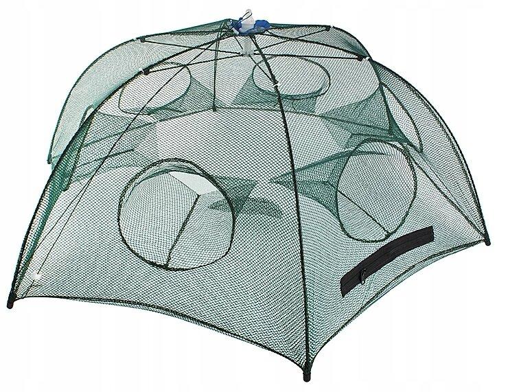 Малявочница - зонтик