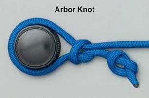 Arbor Knot узел