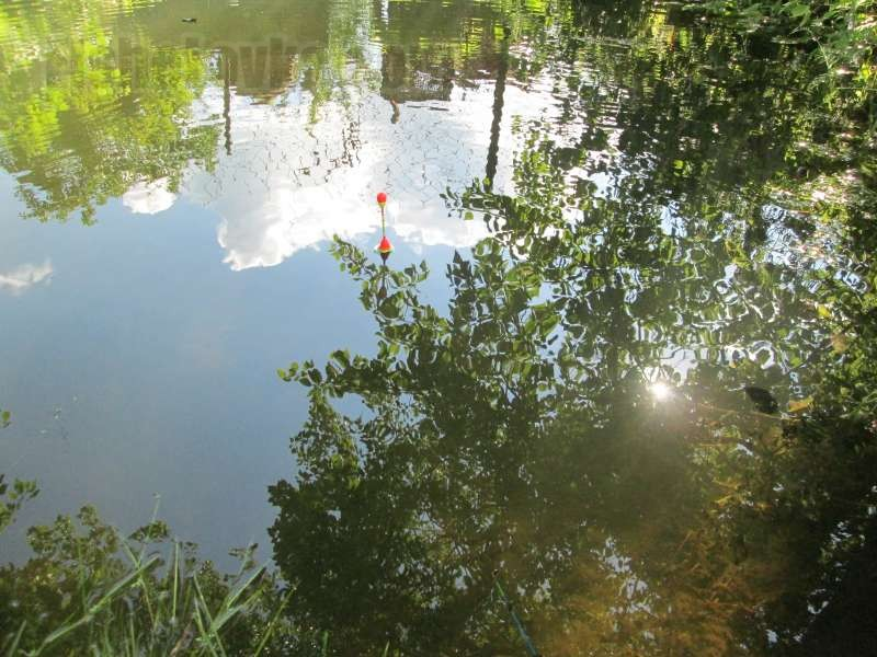 Поплавок хорошо виден на воде.