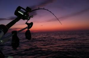 Снасти для ловли налима осенью: подбираем правильно