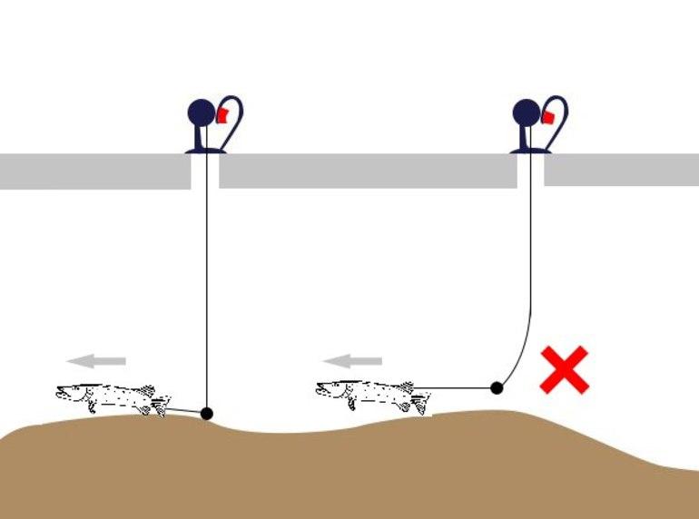 Как ловить рыбу на жерлицу