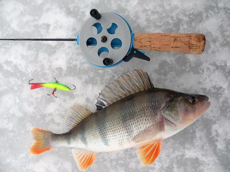 зимняя удочка для ловли на балансир фото 3