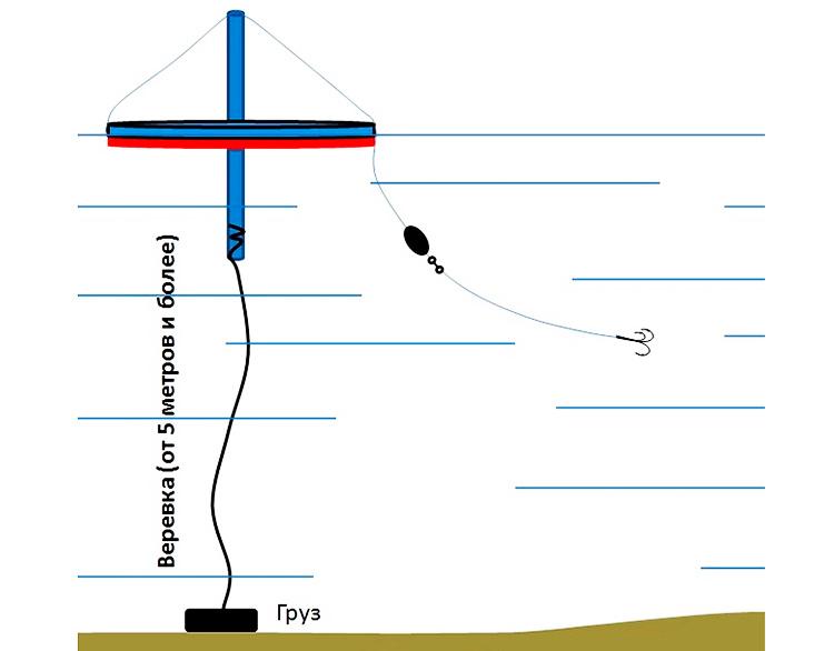 Фиксация кружка на водоеме