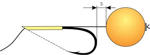 Оснастка для ловли сазана и карпа