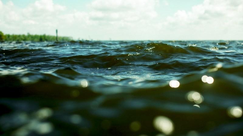 Ветер, волны, и клев рыбы